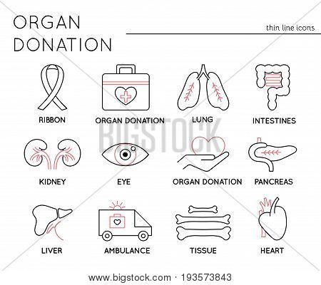 Organ Donation thin line icons set, vector illustration. Donate Life awareness, healthcare concept. Medical isolated symbols, black on white pictograms. Simple mono linear modern design.
