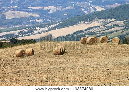 Hay bales in the countryside of Tuscany