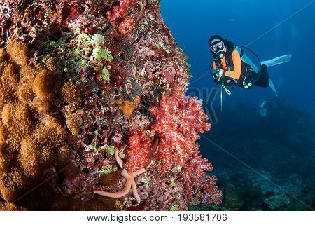 young woman scuba diving on a beautiful soft coral reef in South AndamanKrabi Thailand