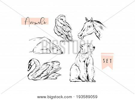 Hand drawn vector abstract graphic animals set collection of swan, polar bear, horse and owl ink brush painted isolated on white background.