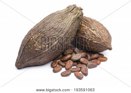heap of cocoa beans with two cocoa pod on white background