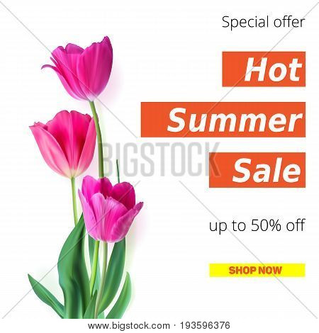 Hot summer sale banner with fifty percent discount. Stylish advertisement text poster on white backdrop with three fresh, the opened flower of a Tulip. Template for online shopping, poster or cover.