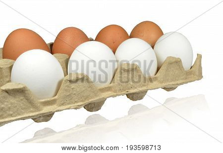 Raw eggs lie in package of porous cardboard. In one row - eggs are brown, in other - white. Isolated on white background