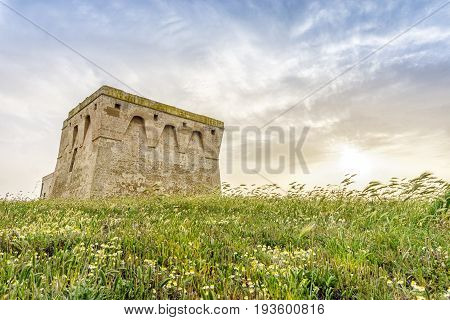 Beautiful Mediterranean Landscape With Medieval Tower, Torre Guaceto,puglia, Italy