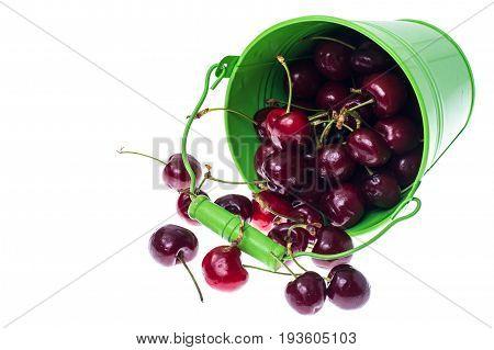 Cherry in an overturned green bucket. Studio Photo