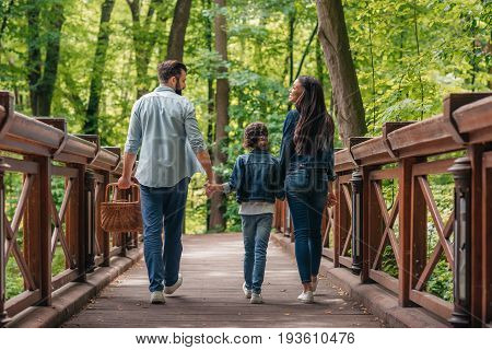 Back View Of Young Interracial Family Holding Hands And Walking Through The Wooden Bridge In Forest