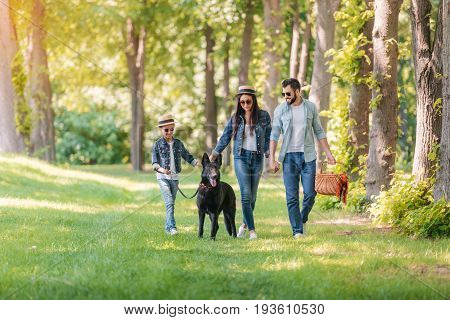Young Interracial Family With Dog Holding Hands And Walking In Sunny Forest