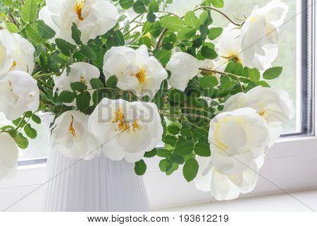 White Flowers Of Rose Hips
