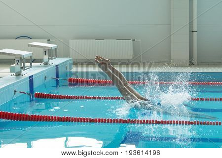 Portrait Of A Female Swimmer, That Jumping And Diving Into Indoor Sport Swimming Pool.