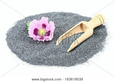 Poppy seed and flower with a wooden shovel in the pile. Organic dry poppy seeds on white background