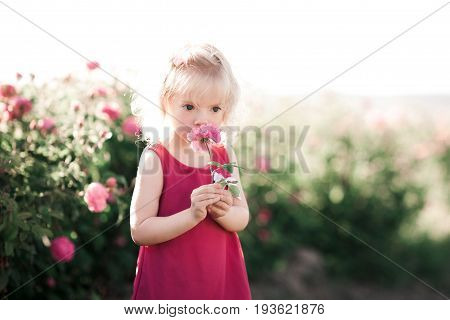 Cute baby girl 3-4 year old with rose flower wearing pink dress outdoors. Childhood.