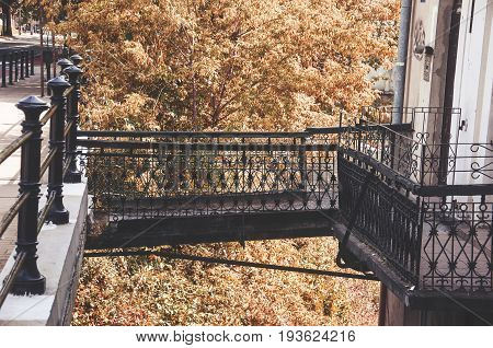 metal bridge connecting sidewalk and commercial tenements yellow tree