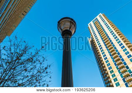 Bottom view of a streetlight a tree and skyscrapers on the background of clear sky Atlanta USA