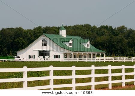 Green And White Barn