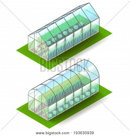 Isometric greenhouse isolated on white photo-realistic vector illustration