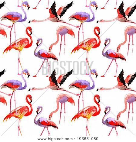Sky bird flamingo pattern in a wildlife by watercolor style. Wild freedom, bird with a flying wings. Aquarelle bird for background, texture, pattern, frame, border or tattoo.