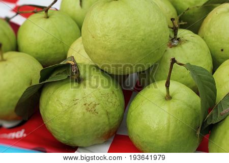 Guava fruit is delicious in the market