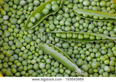Green peas. Fresh Homemade Peas. Peas background