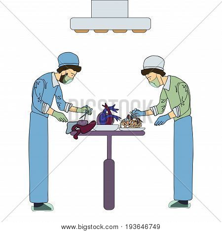Two transplant surgeons work with organs for transplantation. Medical vector illustration, isolated on white background.