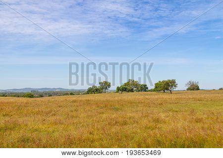 Farm Field In Vale Seco, Santiago Do Cacem