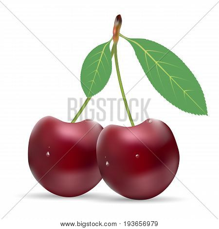 Ripe Red Cherry Berries With Leaves Isolated On A White Background. Realistic Vector Illustration.