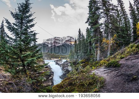 The bubbling waterfall of Athabasca among the forest of Jasper Park. Cold blue water at sunset. The concept of extreme and ecological tourism