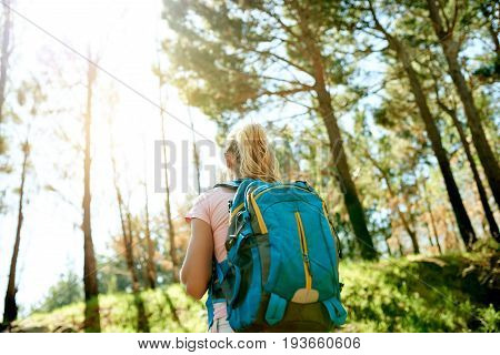 Young Woman Admiring Nature While Out For A Hike