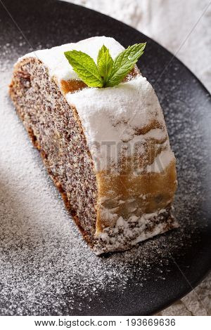 Piece Of Strudel With Poppy Seeds And Nuts Macro. Vertical