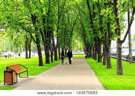 Chernihiv / Ukraine. 06 May 2017: path in the city with big green trees. 06 May 2017 in Chernihiv / Ukraine.