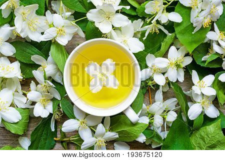 cup of green herbal tea with jasmine flowers over nature jasmine background. top view
