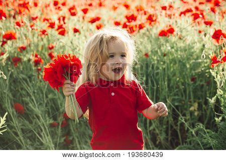 small boy. child with long blonde hair in red shirt in flower field of poppy hold bouquet on natural background summer spring childhood and happiness opium ecology and environment