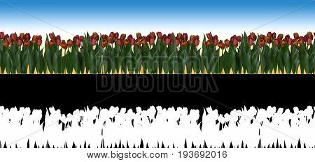 Photorealistic seamless horizontal 3D illustration of tulips with alpha channel for easy selection and editing