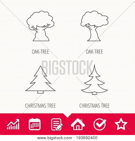 Tree, oak-tree and christmas tree icons. Forest trees linear signs. Edit document, Calendar and Graph chart signs. Star, Check and House web icons. Vector