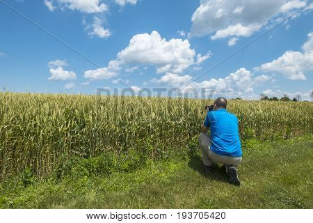 Man taking a picture in front of a wheat field on a sunny day