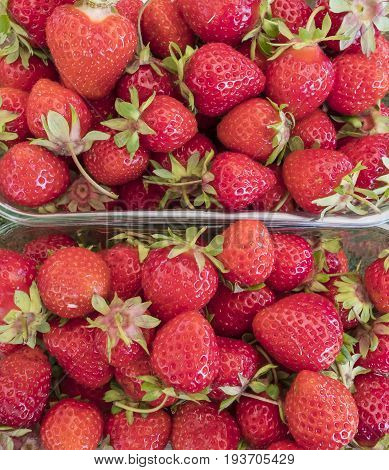 Close up of Freshly Picked Strawberries in Plastic Containers