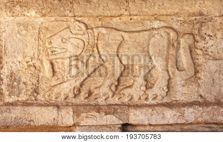 Bas-relief carving of a jaguar, pre-Columbian Maya civilization, Tula de Allende, Hidalgo state, Mexico