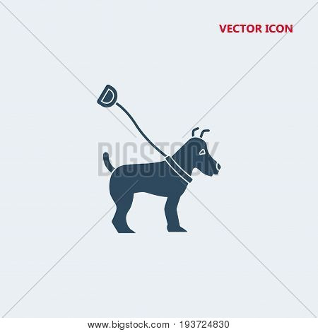 dog on leash lead Icon, dog on leash lead Icon Eps10, dog on leash lead Icon Vector, dog on leash lead Icon Eps, dog on leash lead Icon Jpg, dog on leash lead Icon Picture