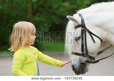 little girl and big horse in nature, kids learning animals