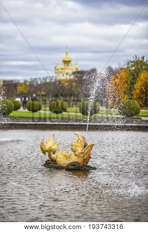 Peterhof Russia October 5 2016: Water fountain in a shape of fish in Peterhof Palace in Russia.