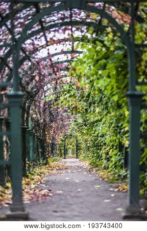 Peterhof Russia October 5 2016: Entrance to a tunnel to garden in Peterhof Palace in Russia.