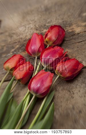 Nosegay Of Red Tulips On Vintage Wooden Surface Background.