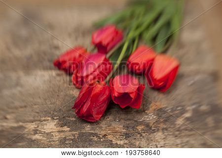 Nosegay Of Tulips On Vintage Wooden Surface Background.
