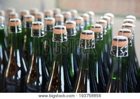 Some champagne bottles in a Catalan cava factory. Industrial production.
