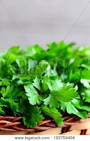 Fresh parsley herbs. Parsley sprigs in a wicker basket. Vertical photo