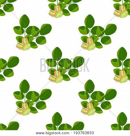 Pistachio texture nuts seamless pattern ruit nutrition organic vegetarian pistachionuts appetizer vector illustration. Green fresh roasted salted pistachio nuts healthy delicious food background.