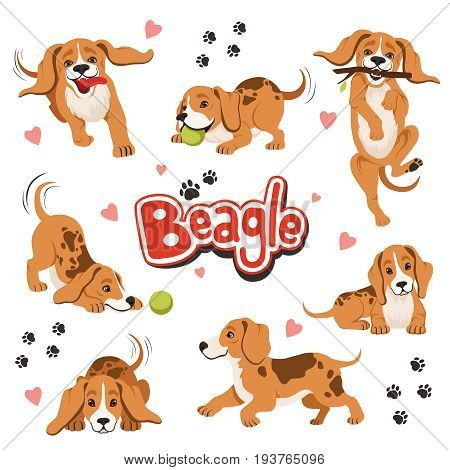 Character of funny movement dog in different dynamic poses. Sitting and shaking pet. Happy character dog beagle, friendly animal dog illustration