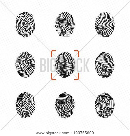 Set of individual fingerprints for personal identification. Vector illustrations. Human fingermark for personal privacy