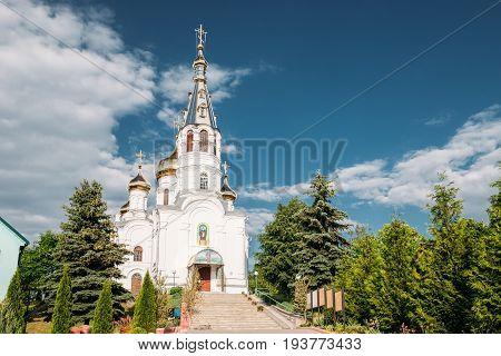 Kamyenyets, Brest Region, Belarus. St Simeon's Orthodox Church In Sunny Summer Day In Kamenets.