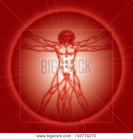 «HOMO VITRUVIANO». The Vitruvian man / Leonardo's man. Detailed drawing on basis of artwork masterpiece by Leonardo da Vinci, ancient manuscript performed by him circa 1490. (Fiery Red Radiance version).