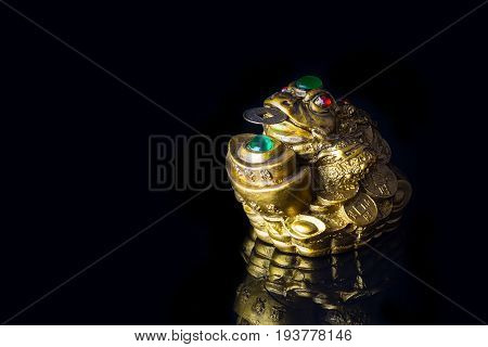 Close-up Chinese Money Frog with the coin symbolizing wealth and prosperity on black background with reflection